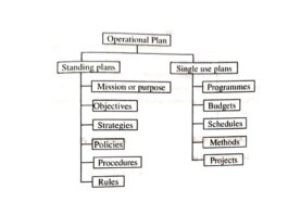 What is management planning