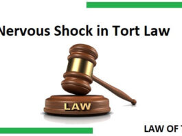 Nervous Shock in Tort Law